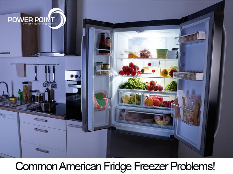 Common American Fridge Freezer Problems!